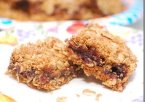 Wild Maine Blueberry Oat Squares