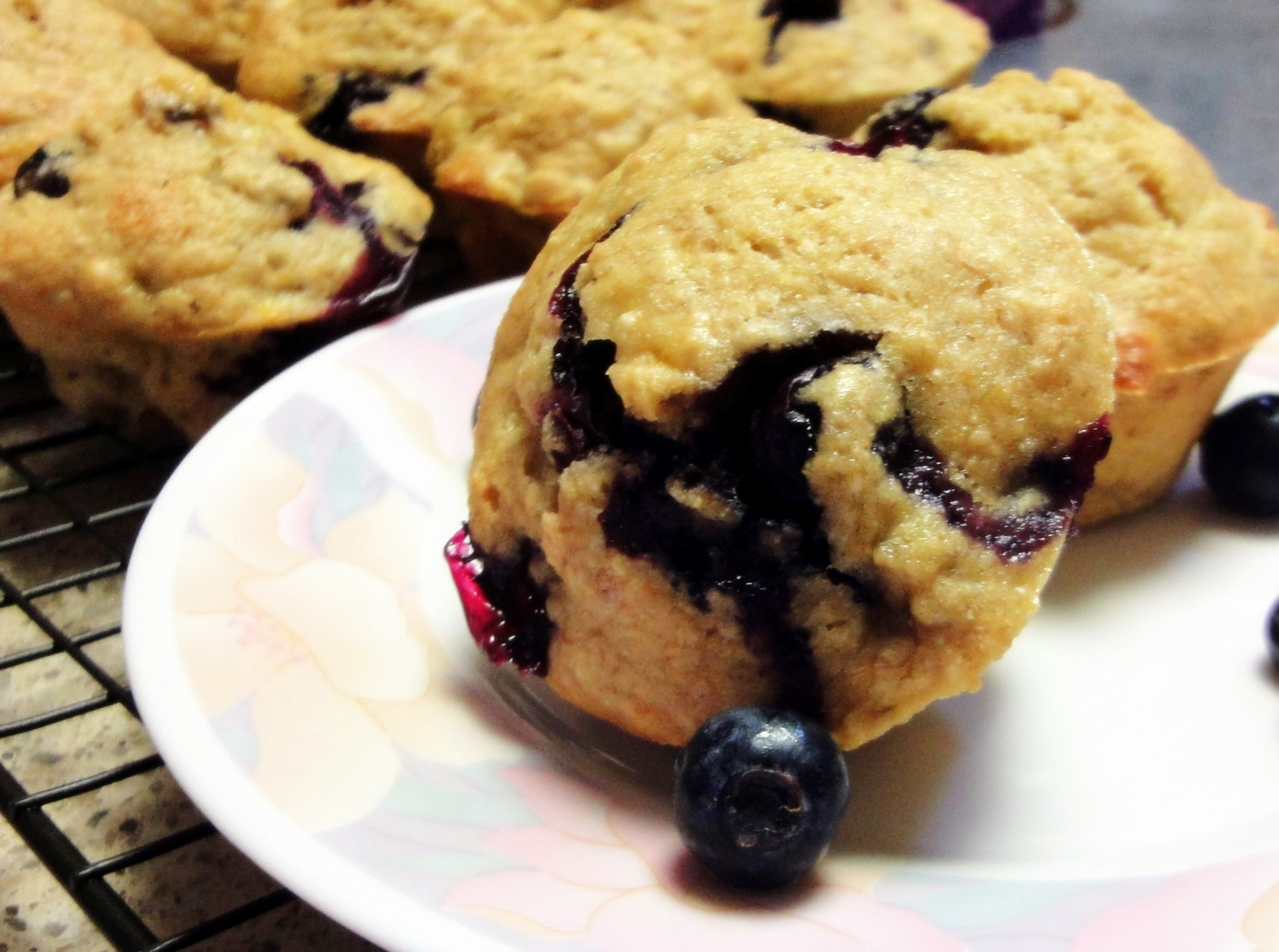Peanut Butter Day and Banana Blueberry Low Fat Muffins