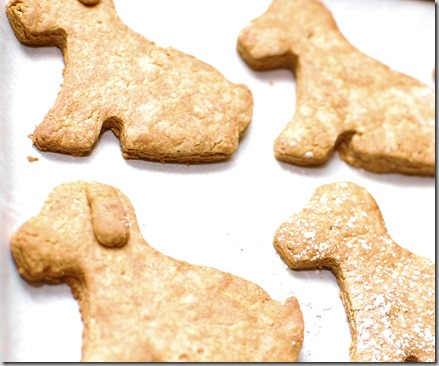 Peanut Butter Cracker Cookies5