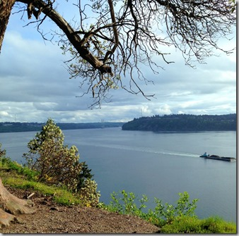 Point Defiance scenic