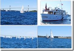 newport collage