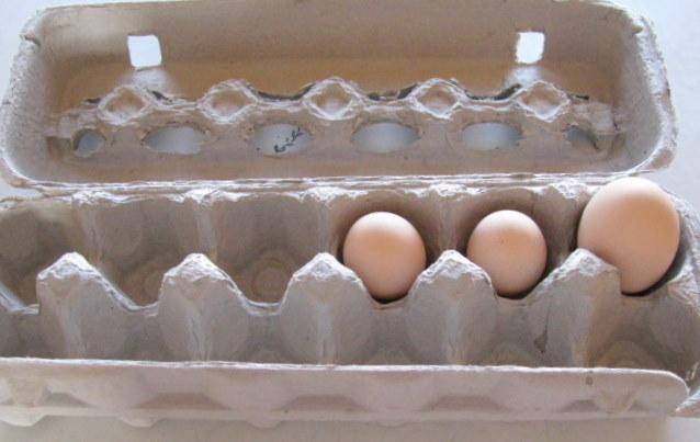 Donna's First Eggs....well her chickens eggs that is.