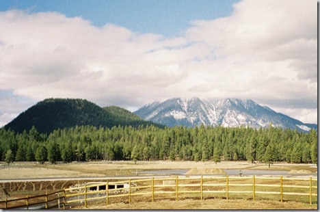 A1 Mountain Trail