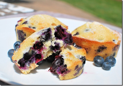 CNYEats A Taste of UTica Blueberry Muffins2