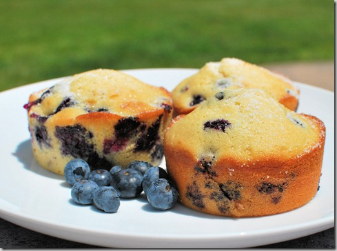 CNYEats A Taste of UTica Blueberry Muffins9