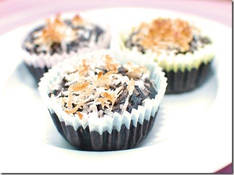 Coconut Milk Cocoa Muffins1