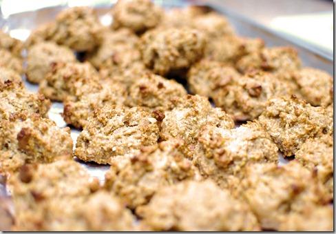 Energy PB Cookies (7)