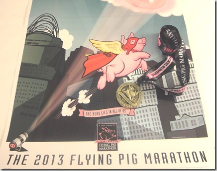 Flying Pig Meda1