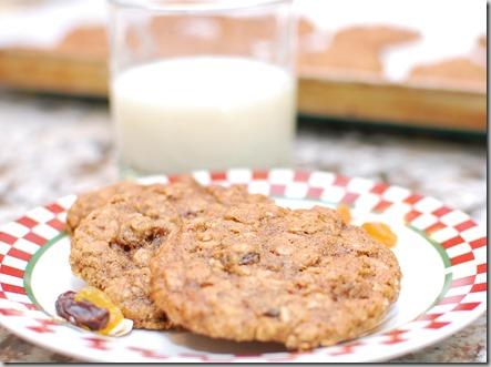 Bouchon Oatmeal Raisin Cookie5
