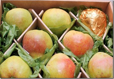 Pears Rolos TKOS4