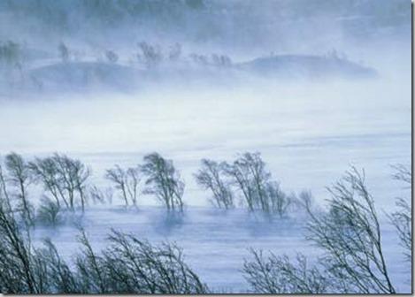 cold windy winter