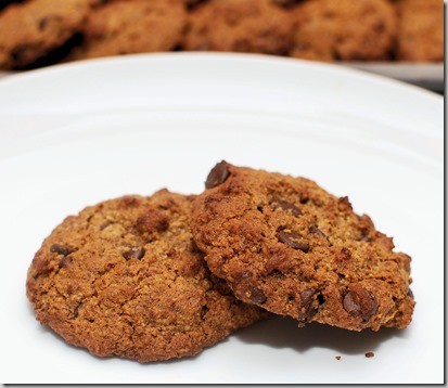 Almond Meal Chocolate Chip cookies5