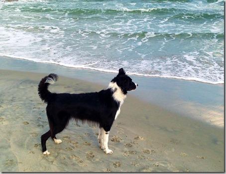 Zoey beach