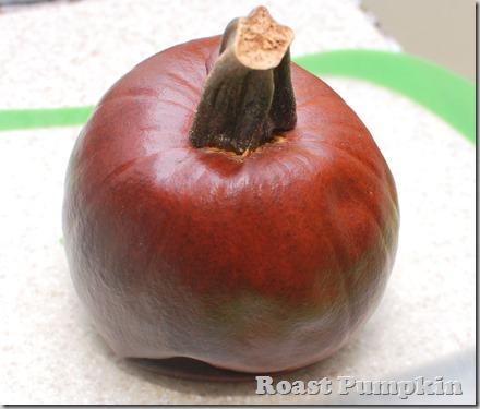 Pumpkin soup3